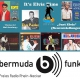 It's Elvis Time #193 auf Radio bermuda.funk