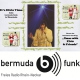 It's Elvis Time #201 auf Radio bermuda.funk