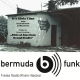 It's Elvis Time #202 auf Radio bermuda.funk
