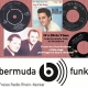 It's Elvis Time #207 auf Radio bermuda.funk