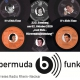 It's Elvis Time #223 auf Radio bermuda.funk