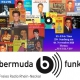 It's Elvis Time #224 auf Radio bermuda.funk