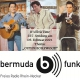 It's Elvis Time #227 auf Radio bermuda.funk