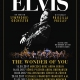 THE WONDER OF YOU – Elvis live on screen 2017